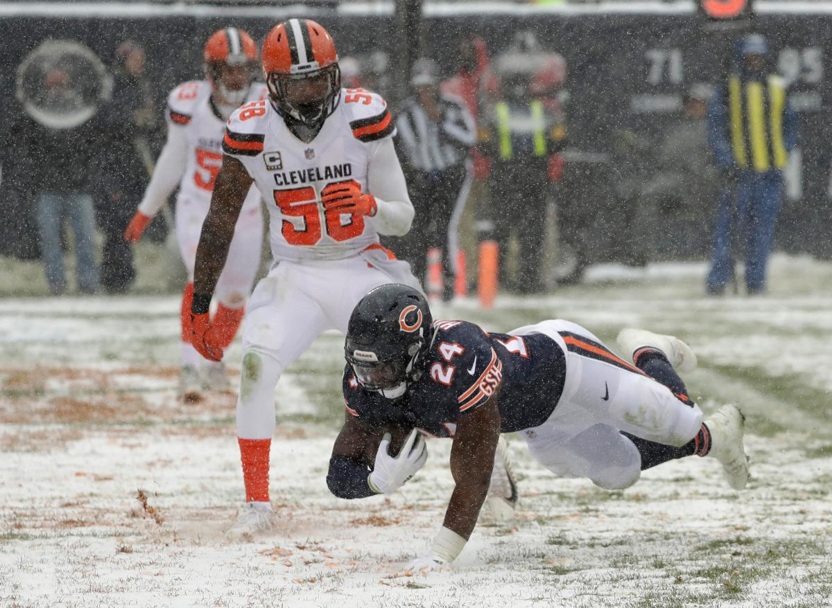 Browns Lose Last Possible Win to Bears 20-3